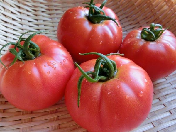 トマトリコピンで抜け毛予防!生で食べるより効果的に摂取するには?